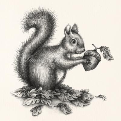 'Squirrel' Stacey Maree