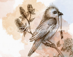 'The Bird' - The Woodland Creatures