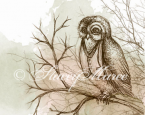 'The Owl' - The Woodland Creatures series.