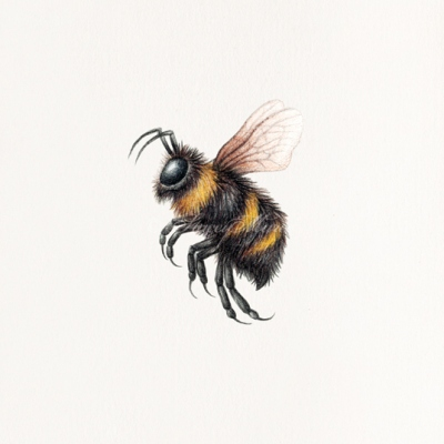 'Bee' Stacey Maree