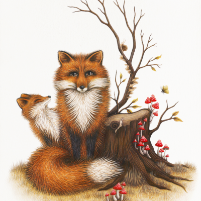 Fox and Fungi Stacey Maree