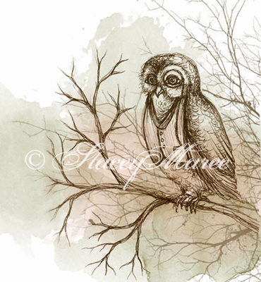 'The Owl' - The Woodland Creatures series. Stacey Maree